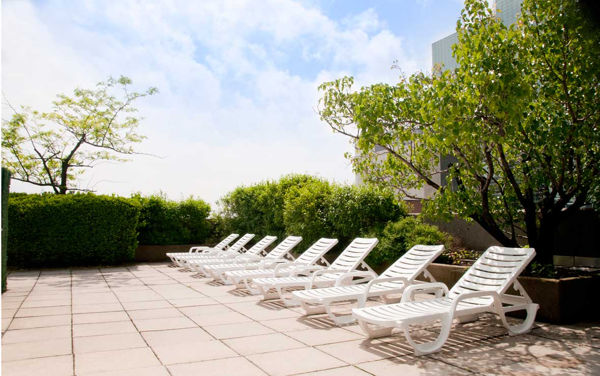 A row of white plastic lounge chairs and lush greenery on the rooftop of The Belmont on a sunny day in New York City.
