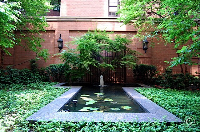 A small water fountain with green lilies surrounded by lush greenery in New York City.